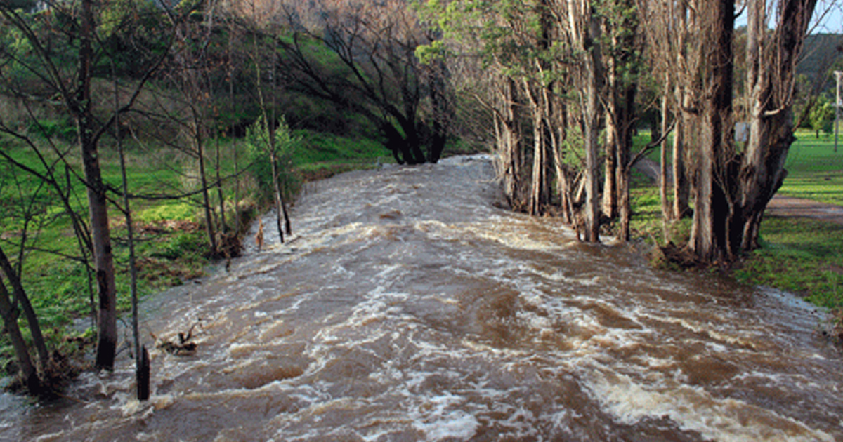 lachlan river flooding
